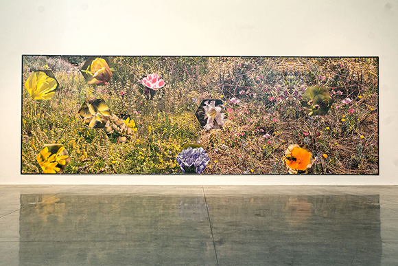 "Nancy Macko, ""Meadow, 2015,"" Digital output on vinyl, 12 X 36'"