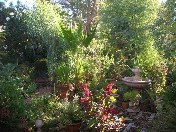 Garden photograph courtesy of David Babb, 2012