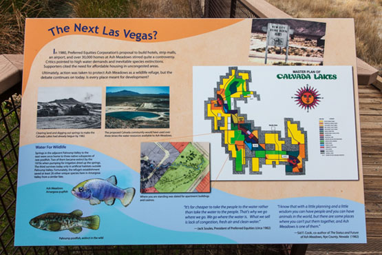 Interpretive display showing the intended master plan for the Cavada Lakes estates. | Photo: Kim Stringfellow.