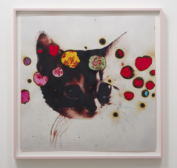 I ♥ Kitties, 2014, hand-embellished digital pigment print with fabric collage, 48.25 x 48.25 inches framed | Courtesy Luis De Jesus Los Angeles