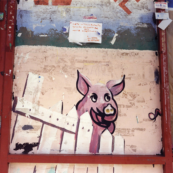 """Pig,"" 2011 