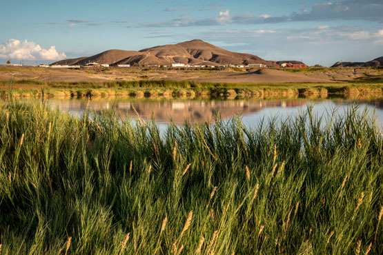 View of Tecopa Hot Springs from the Tecopa Marsh wildlife area. | Photo: Kim Stringfellow
