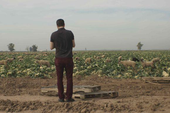 <em>El Field.</em>