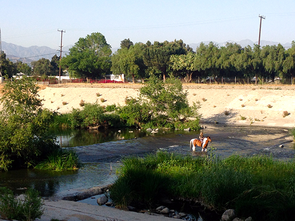 Los Angeles River, Glendale Narrows | Photo: Daniel Medina