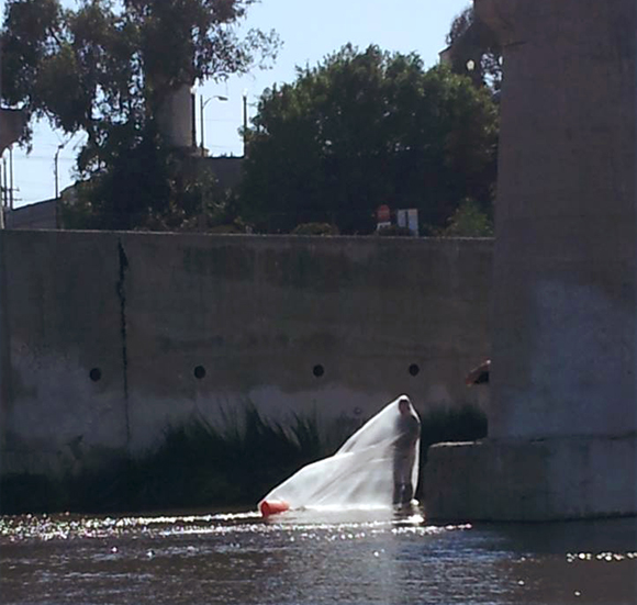 Rafa Esparza's L.A. River performance