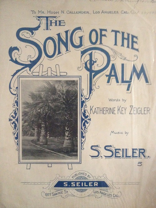 The Song of the Palm