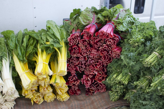 Chard in every color