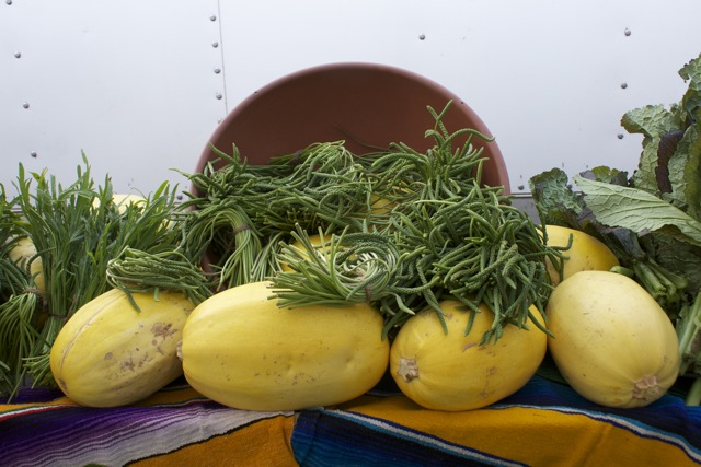 Squash and flower stems that are good for pickling, at Windrose Farms