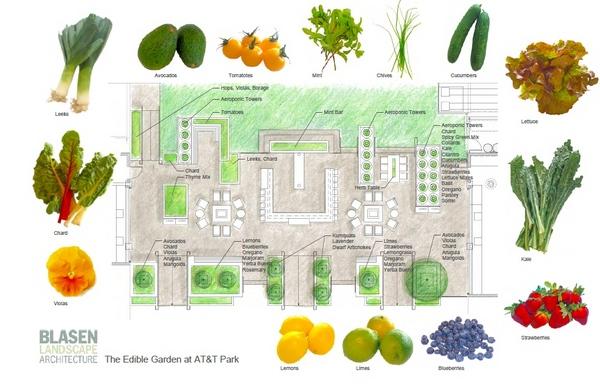 gardengraphic1-thumb-600x385-77601