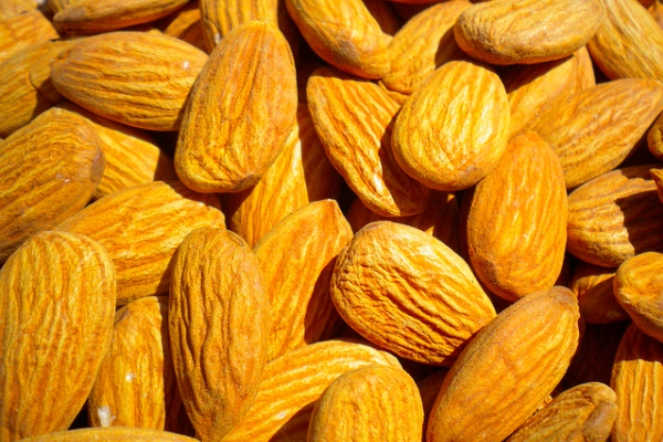 almondstudy