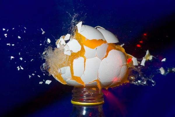 egglawsuit