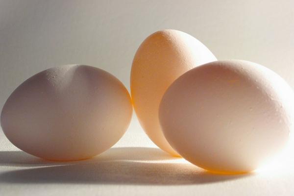 eggs-600