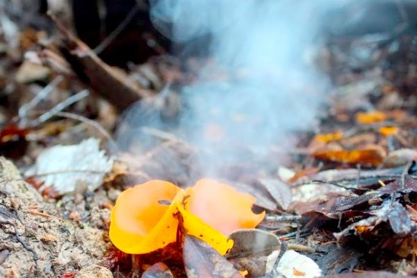 mushroom5a