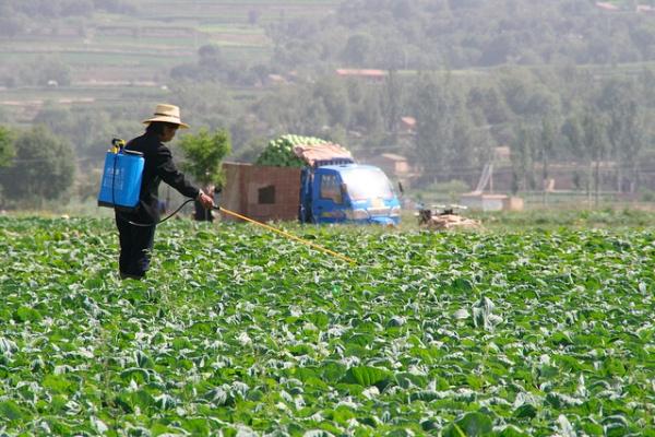 pesticideallergic1
