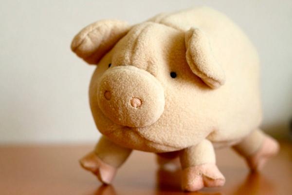 pigschina1-600-1