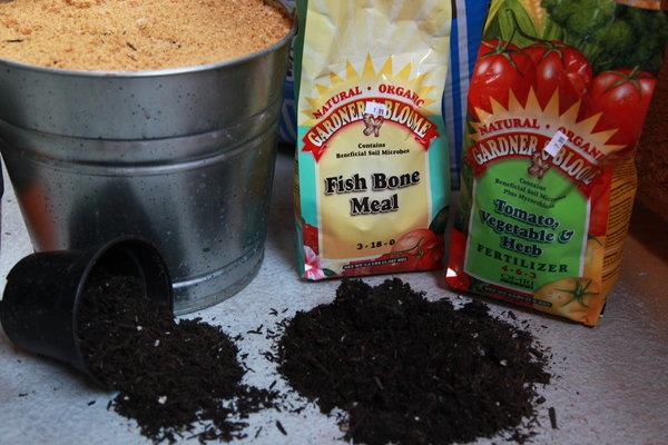 Soil, fertilizer, and mulch: three very important and boring things.