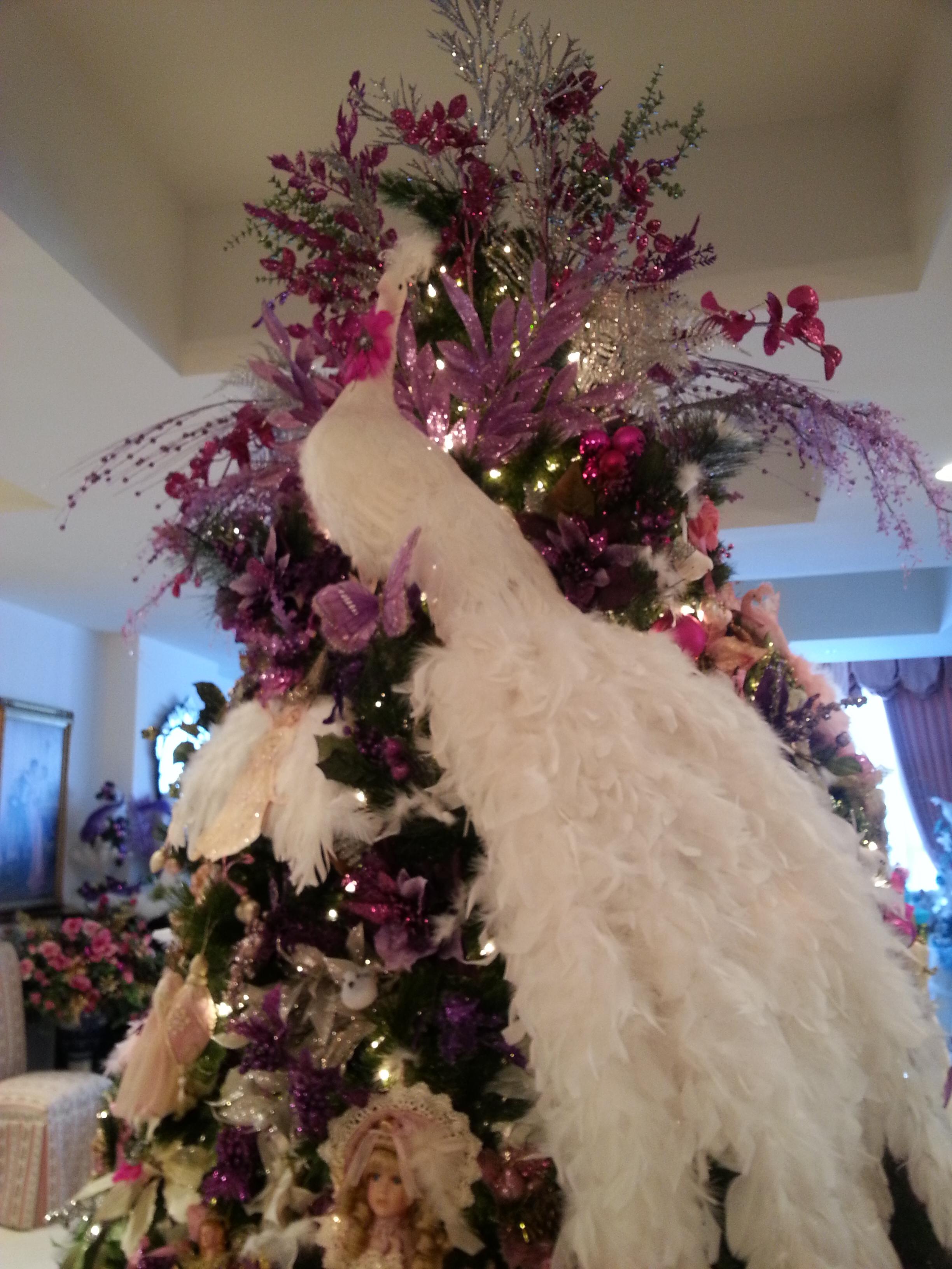 This year's tree.