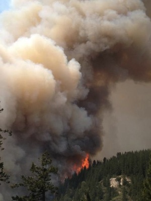 A Smoke Column From The Aspen Fire. | Photo: Courtesy Inciweb