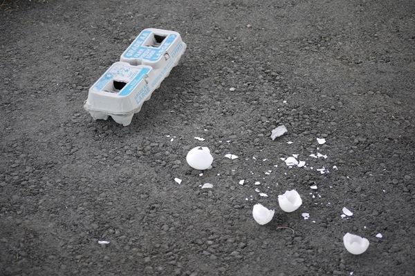 Cracked eggs left on asphalt in Death Valley National Park. | Photo: Courtesy NPS