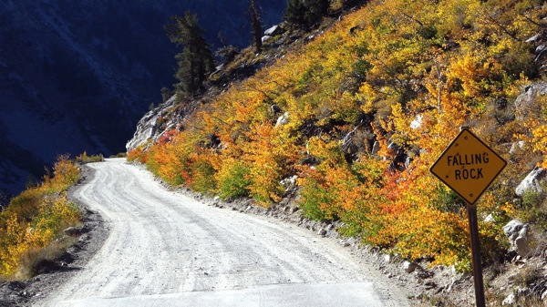 Oranges peaking along North Lake Road. | Photo: Zach Behrens/KCET