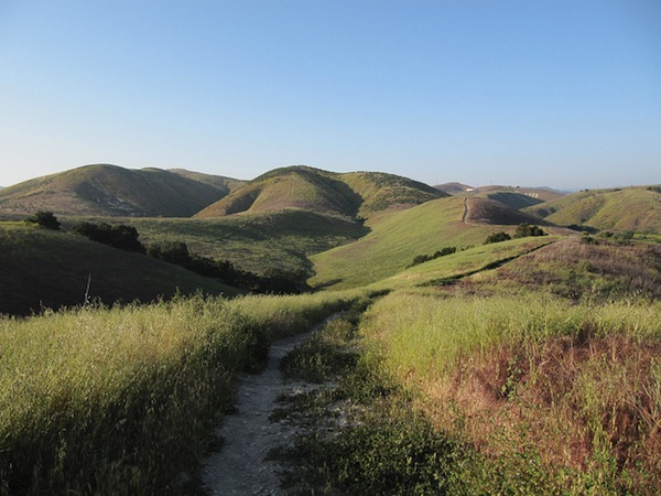 The hills of Cheeseboro and Palo Camado Canyons, a unit of the National Park Service.