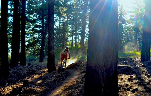 A mountain biker on the Skyline Trail. | Photo: Courtesy Big Bear Lake Resort Association