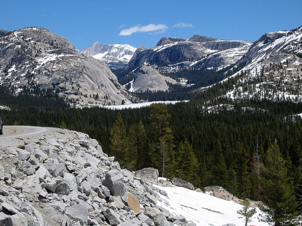 A view from Tioga Road