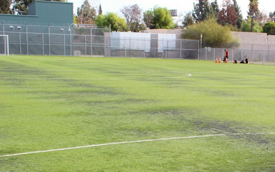 An artificial turf field made with crumb rubber at Whitsett Fields Park in North Hollywood.