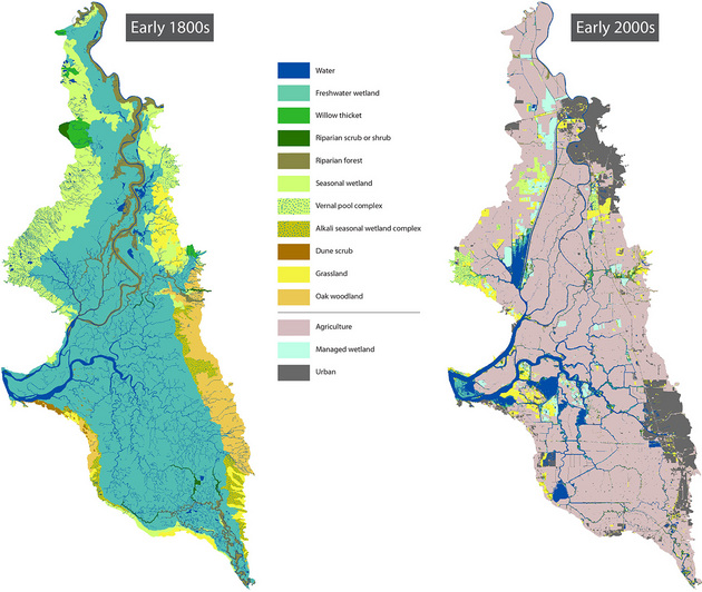 Agricultural use has dominated what used to be a major wetland area