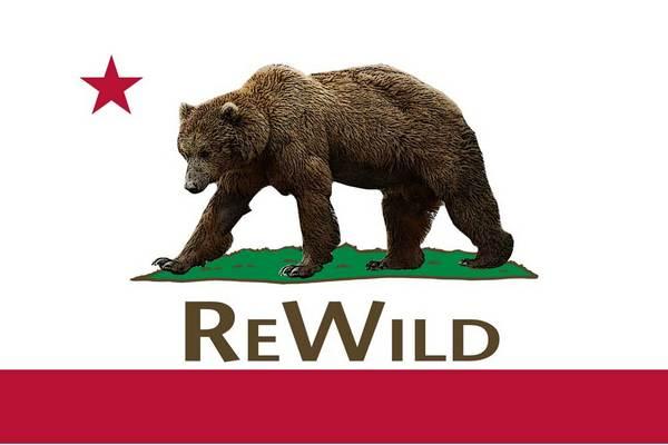 rewilddraft-thumb-600x400-61911