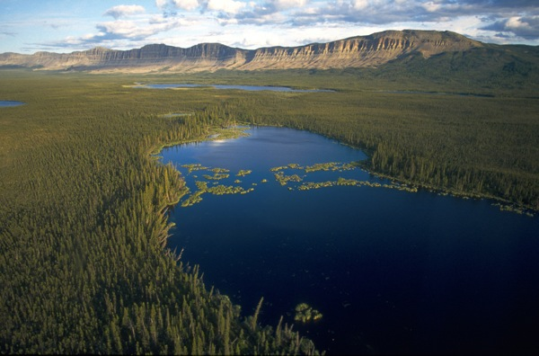 A lake in a boreal forest of the Northwest Territories in Canada. | Photo: Courtesy Ducks Unlimited Canada