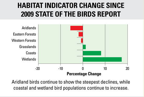 state-of-the-birds-graph-thumb-600x406-80535