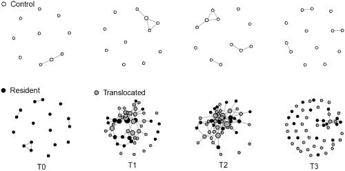 tortoise-networking-graph-12-2-14-thumb-630x312-84668
