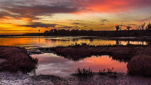 bolsa-chica-sunset-5-18-15-thumb-630x354-92680