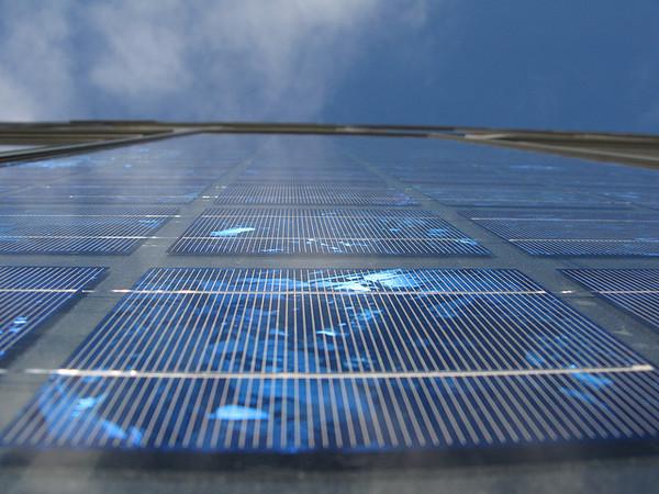 solar-garden-8-23-12-thumb-600x450-34732