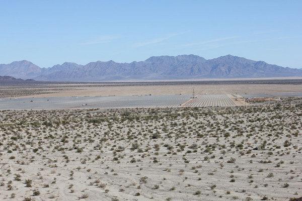 Desert-Sunlight-10-2-12-thumb-600x400-37153
