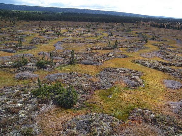 permafrost-2-24-13-thumb-600x450-45925