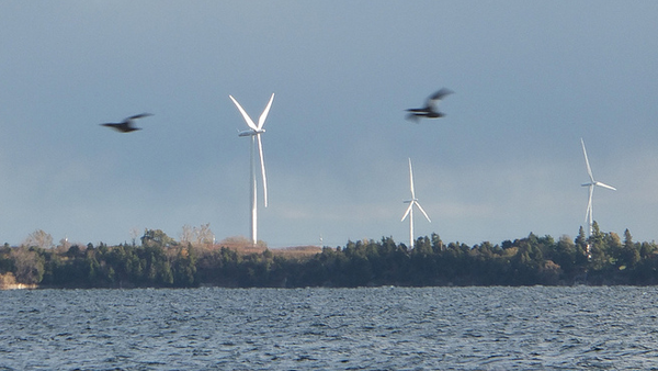 audubon-and-wind-turbines-2013-12-13-thumb-600x338-65825