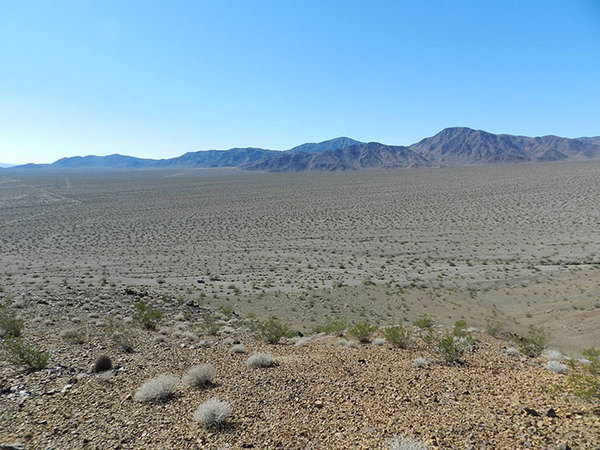 View of the North Array site's currently undisturbed desert tortoise habitat from the Soda Mountains.