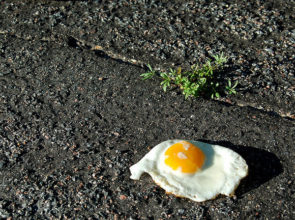 egg-frying-asphalt-6-2013-thumb-600x448-54165