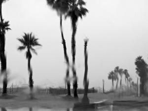 los-angeles-summer-rain