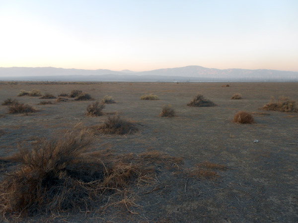 The view, looking north towards the Tehachapi mountains, of 'The Trinidad Ranch,' an empty parcel of land owned by the author's family, in the western Antelope Valley.