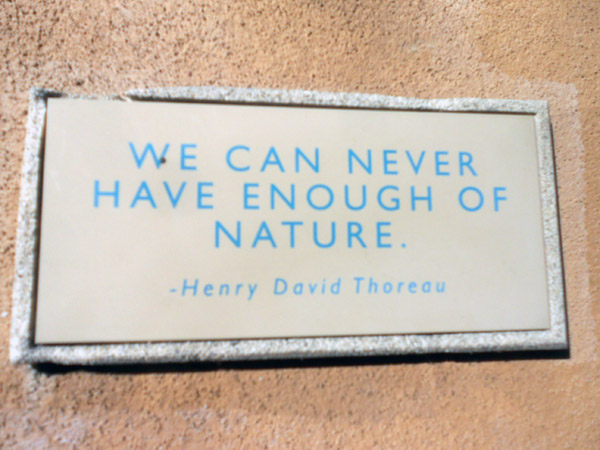 Thoreau said it best, on a sign that hangs at the Audubon Center at Ernest E. Debs Regional Park.
