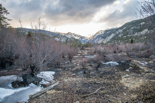 The fire scorched Cub Lake Trail in Moraine Park, Rocky Mountain National Park on January 27, 2013