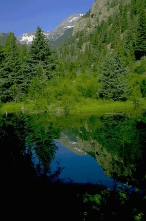 Fern Lake. | Photo: Courtesy NPS