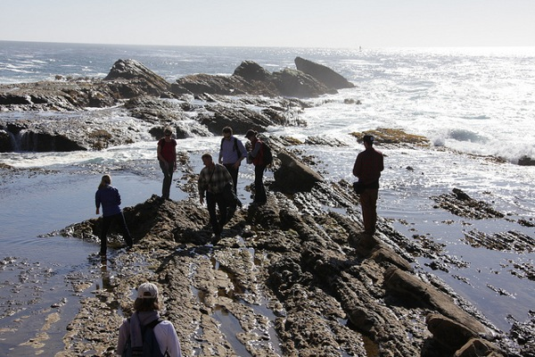 Point Arena-Stornetta Public Lands. | Photo: Courtesy Dept. of the Inteior