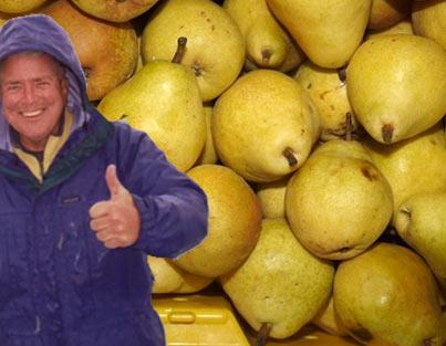 huell-pears.jpg