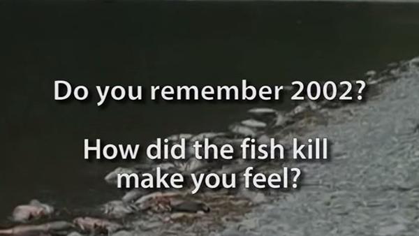 FishKill2