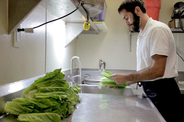 Joshua Gabai, the mashgiach, inspects lettuce -- a big part of his job