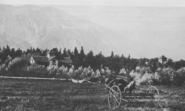 A worker plows the fields at Santa Anita Ranch ca. 1886